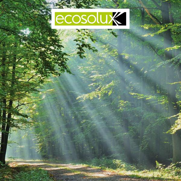Sito web responsive - Ecosolux (Milano)